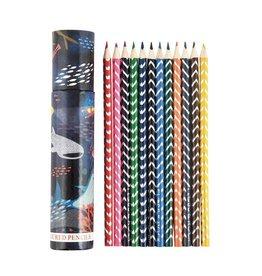 Floss & Rock Floss & Rock Deep Sea Tube of 12 Coloured Pencils