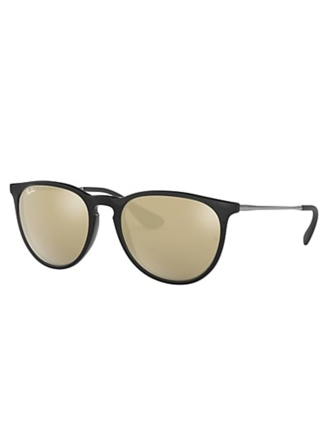 Erika Metal RB3539 Photo Chromic