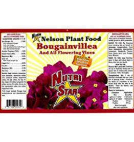 Nelsons Bougainvillea 4#