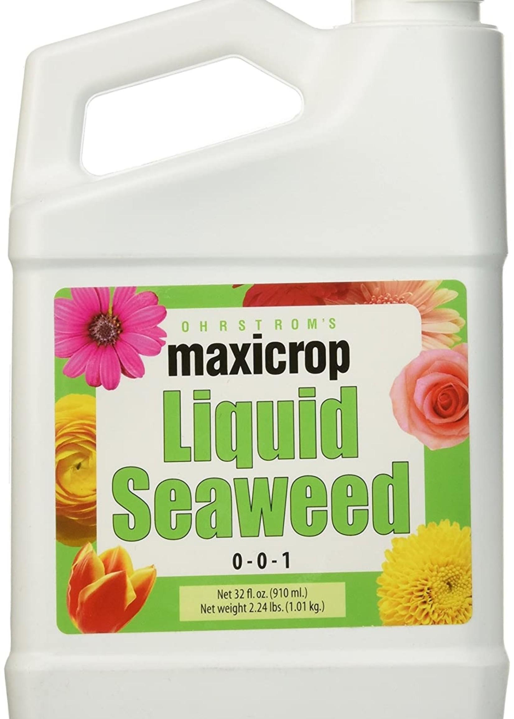 Maxicrop Liquid Seaweed 1 gal.
