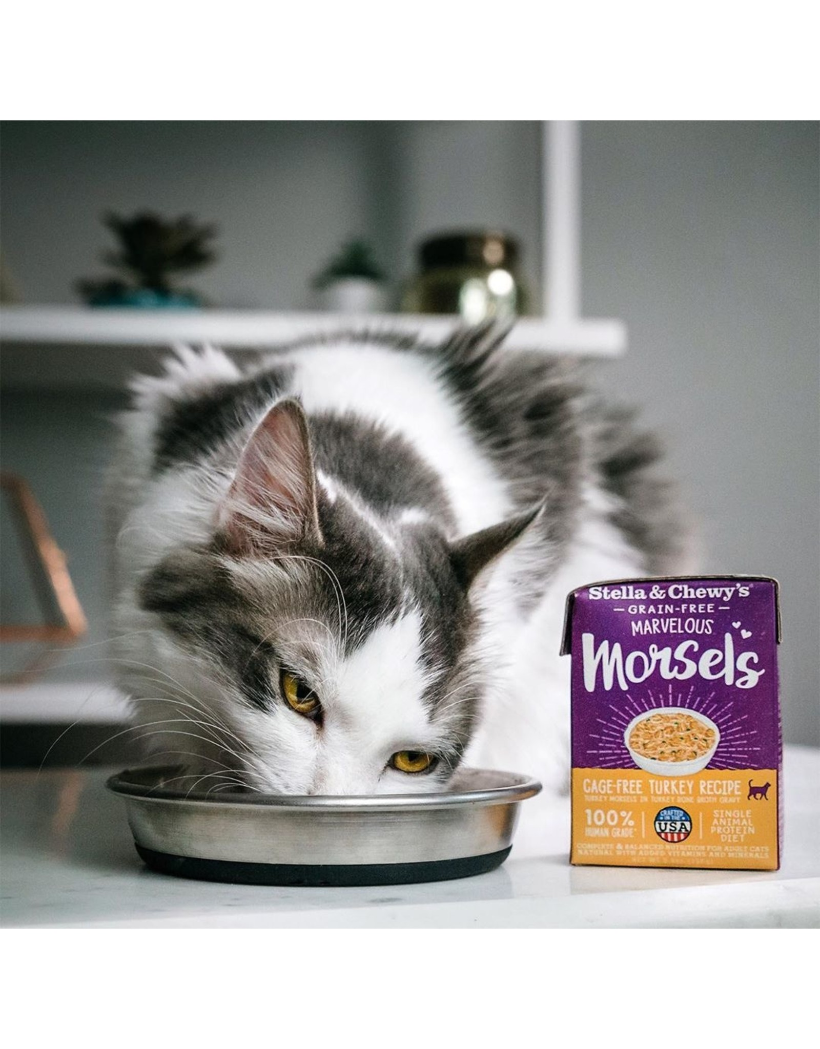 Stella & Chewy's Stella & Chewy's Cat Marvelous Morsels