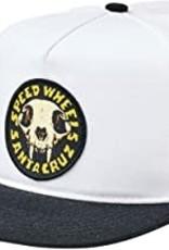 Santa Cruz Santa Cruz Snapback SW Skull