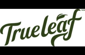 True Leaf