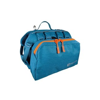 RC Pets Teal Quest Back Pack