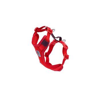 RC Pets Goji Berry Moto Harness