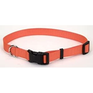 Coastal Adjustable Nylon Clip Collar
