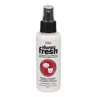 Enviro Fresh 118ml Strawberry Plaque Spray