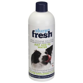 Enviro Fresh 400ml Adult Slurp 'n Fresh