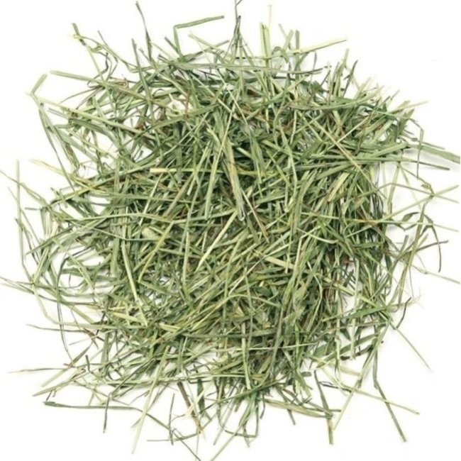 Seed to Sky 4.4lb Timothy Hay