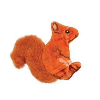 Coastal Orange Squirrel