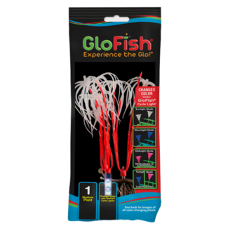 GloFish Medium Orange Plant