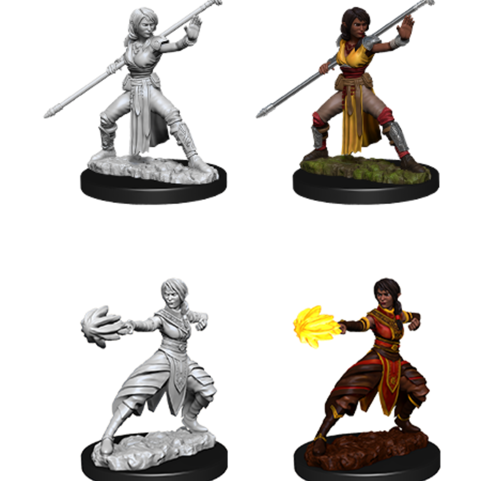 WizKids D&D Minis: Wave 10 - Female Half-Elf Monk