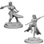 WizKids D&D Minis: Wave 1 - Human Female Monk