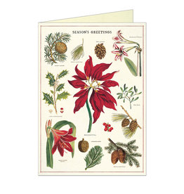 Cavallini Papers & Co. Christmas Botanica Brittany Notecard