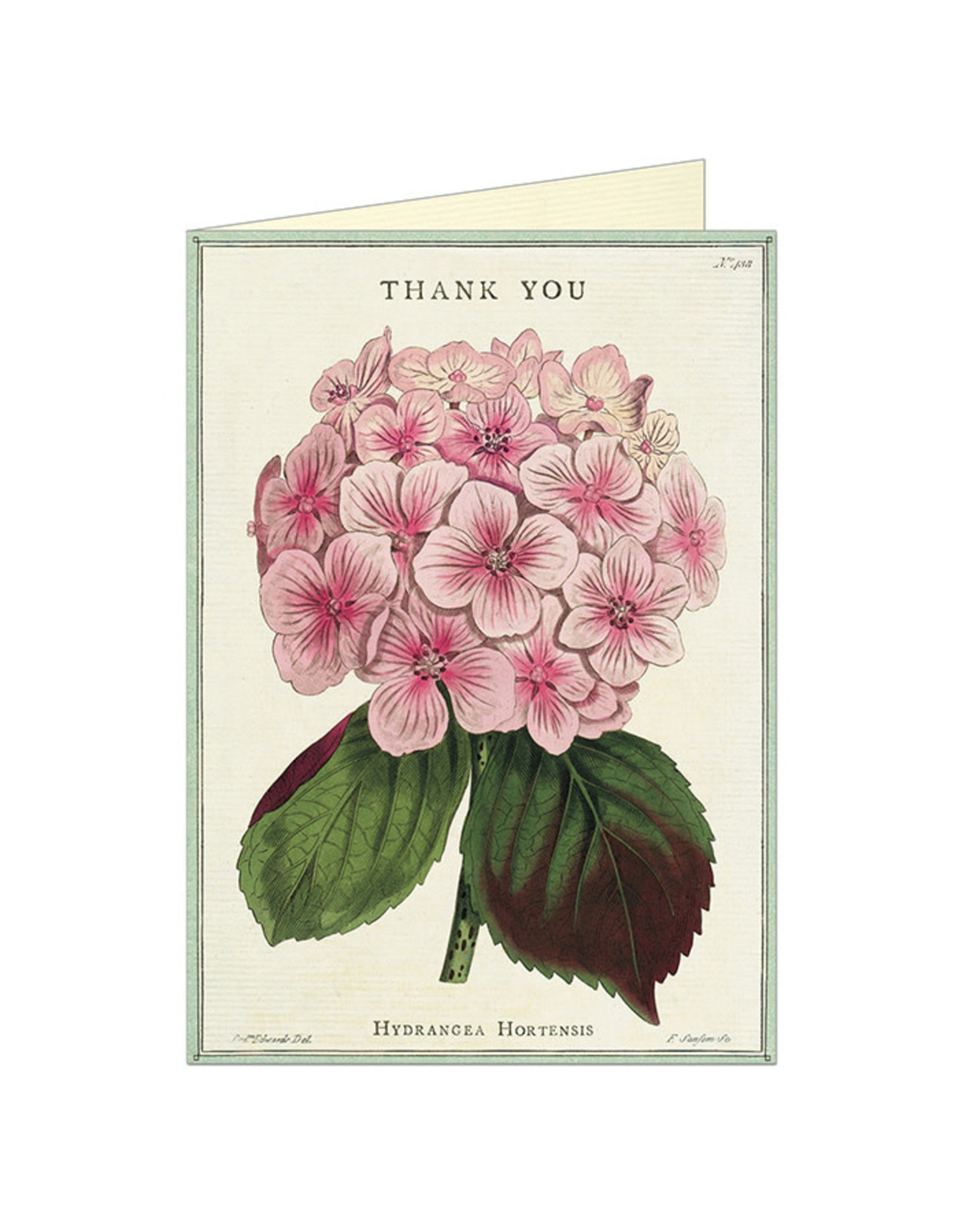 Cavallini Papers & Co. Thank You Fleur 1 Greeting Notecard