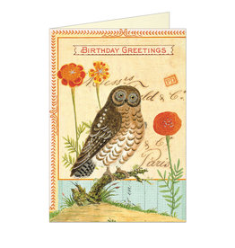 Cavallini Papers & Co. Happy Birthday Owl Notecard