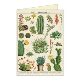 Cavallini Papers & Co. Everyday  Cacti & Succulents Notecard