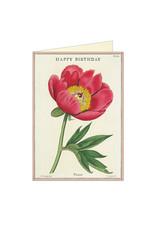 Cavallini Papers & Co. Birthday Peony Notecard