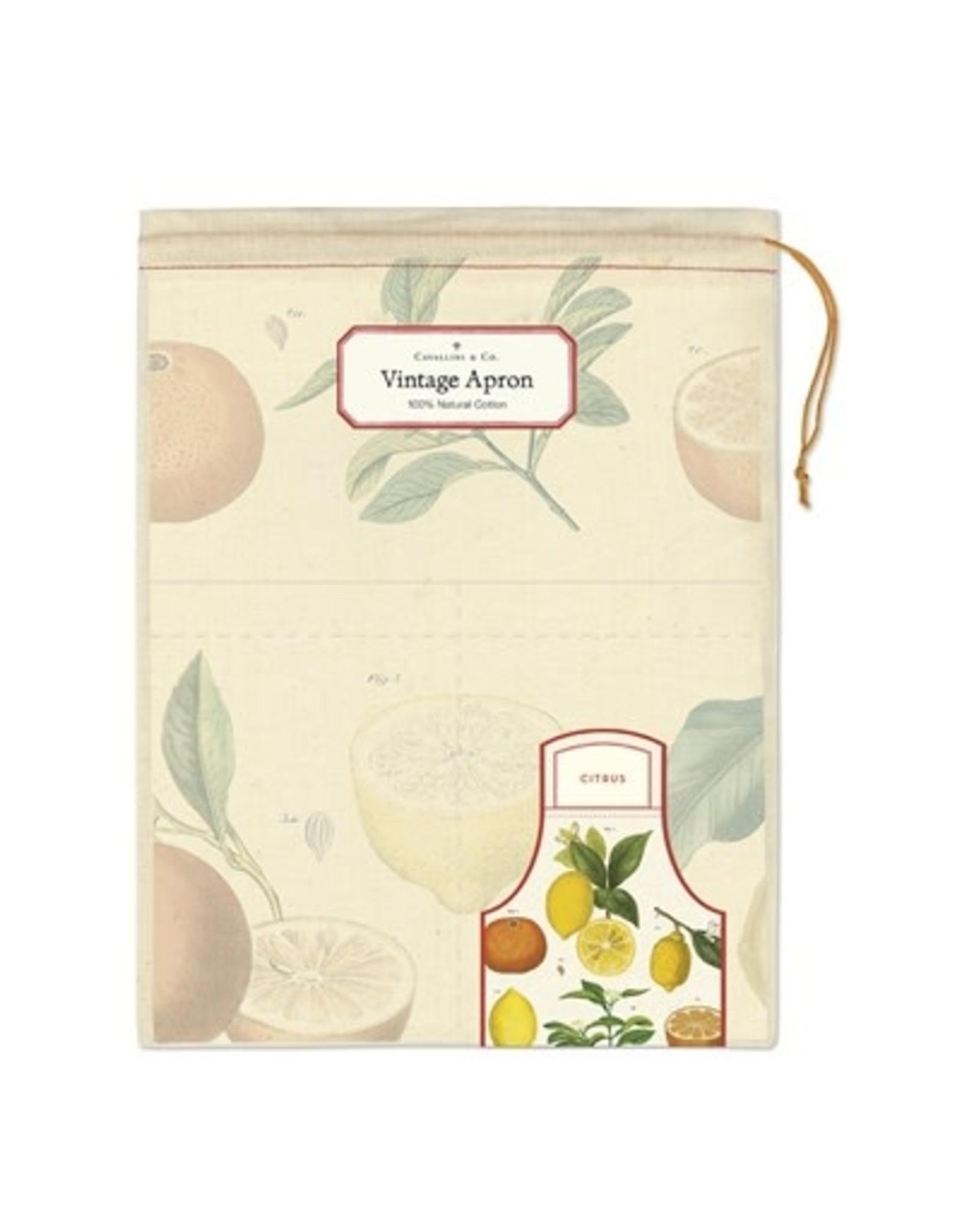 Cavallini Papers & Co. Citrus Vintage Apron