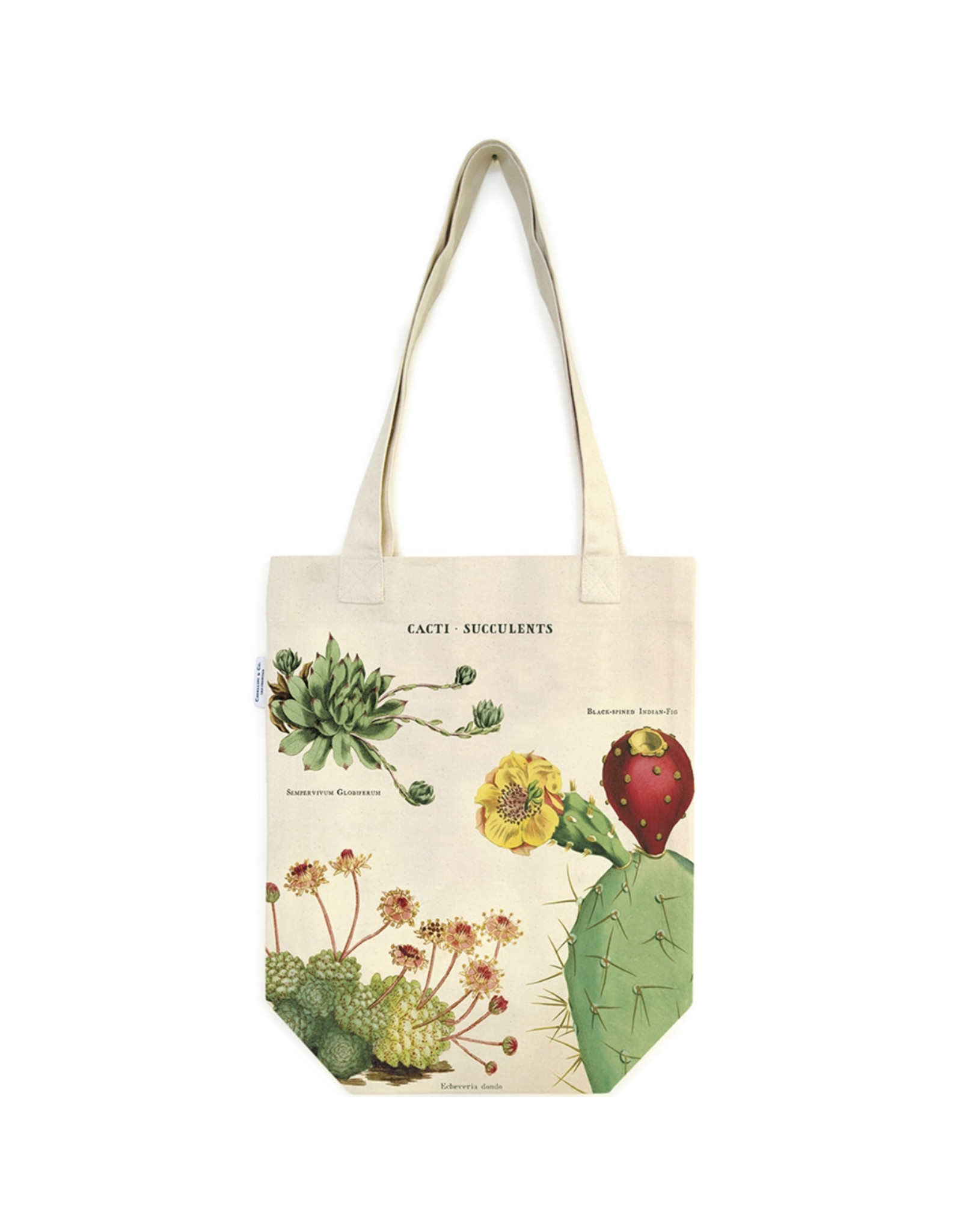 Cavallini Papers & Co. Cacti & Succulents Tote Bag