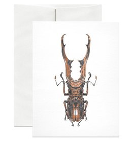 Open Sea Design Co. Stag Beetle A2 Everyday Notecard