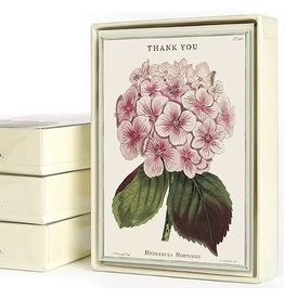 Cavallini Papers & Co. Thank You Fleur 1 Boxed Notecards