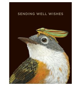 Hester & Cook Well Wishes Warbler Greeting Card A2
