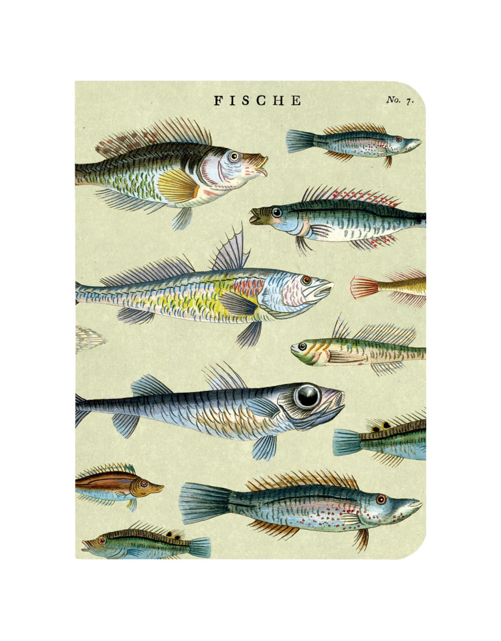 Cavallini Papers & Co. Sea Life 3 Mini Notebooks