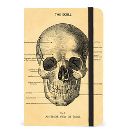 Cavallini Papers & Co. Skull Small Notebook