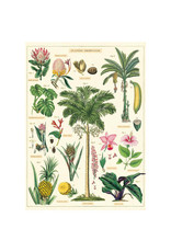Cavallini Papers & Co. Wrap Tropical Plants