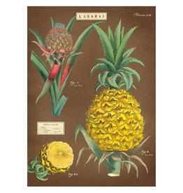 Cavallini Papers & Co. Wrap Pinapple