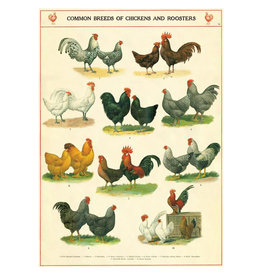 Cavallini Papers & Co. Wrap Chickens & Roosters
