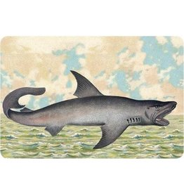 Cartolina Seaside Shark Postcard