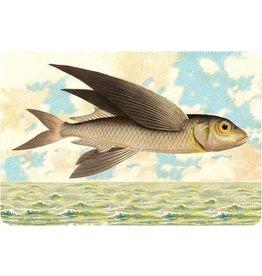 Cartolina Seaside Flying Fish Postcard