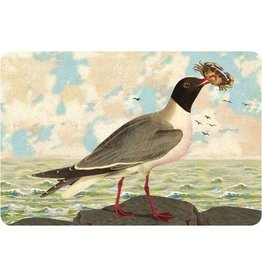 Cartolina Seaside Seagull Postcard