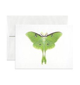 Open Sea Design Co. Luna Moth A2 Everyday Notecard