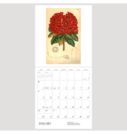 Pomegranate The Illustrated Garden: Prints from Curtis's Botanical Magazine 2022 Wall Calendar
