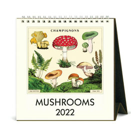 Cavallini Papers & Co. 2022 Desk Calendar Mushrooms