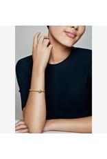 Pandora Pandora Shine Clip, Seeds Of Elegance
