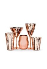 Abbott Hammer Finish Tumbler Copper Glass