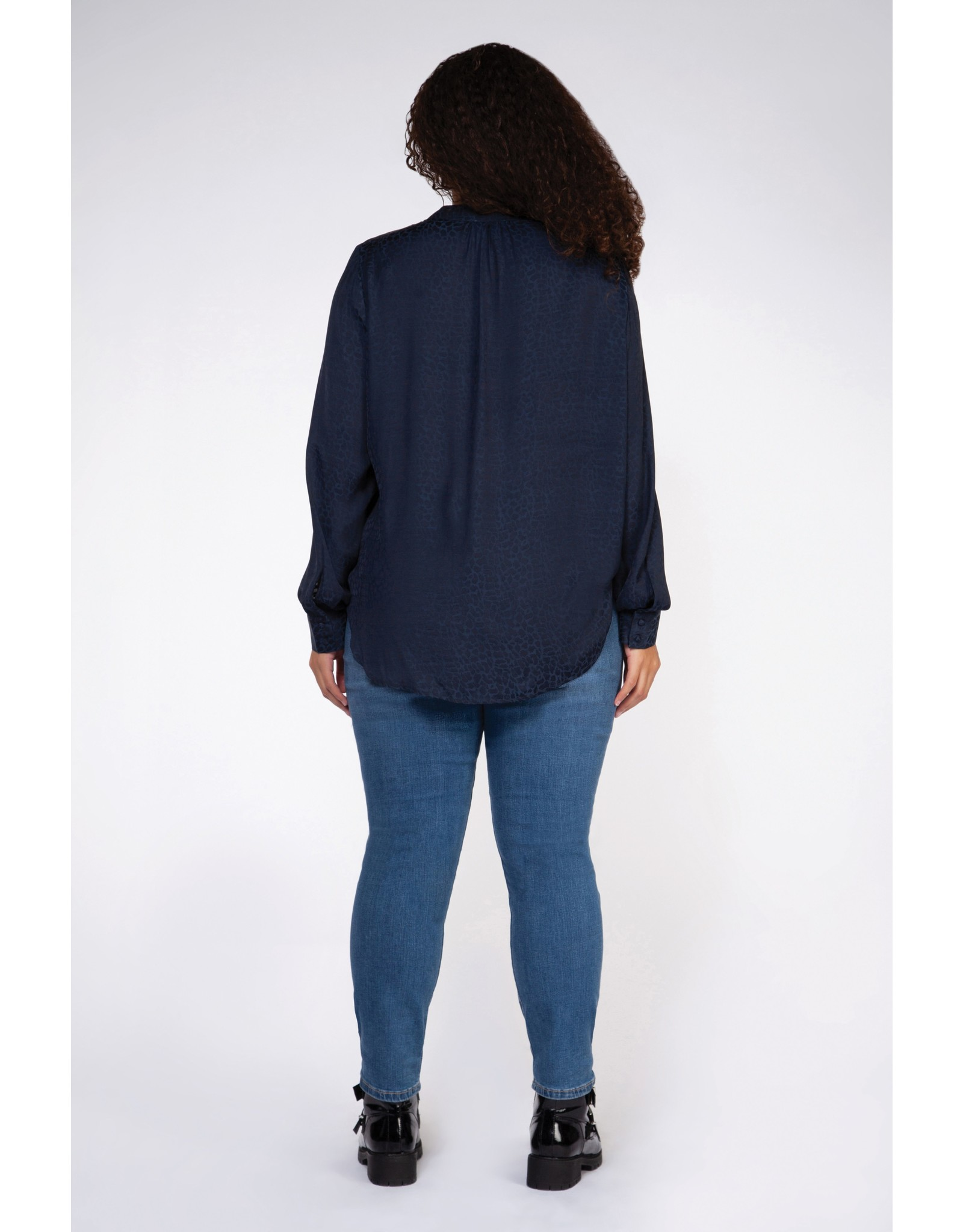 Dex Plus Pullover V-Neck Blouse
