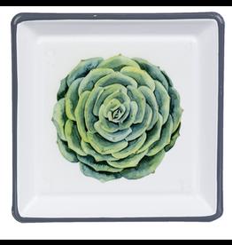 Enamel Succulent Trinket Dish, Green Abalone