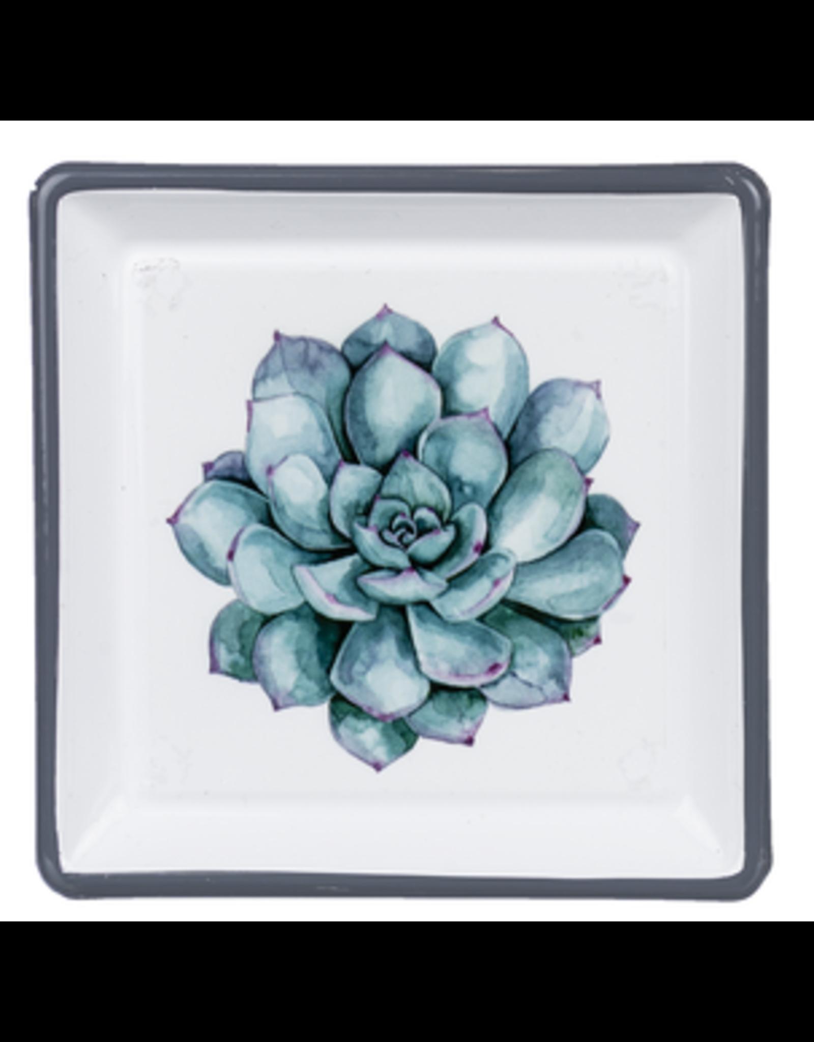 Enamel Succulent Trinket Dish, Elegans