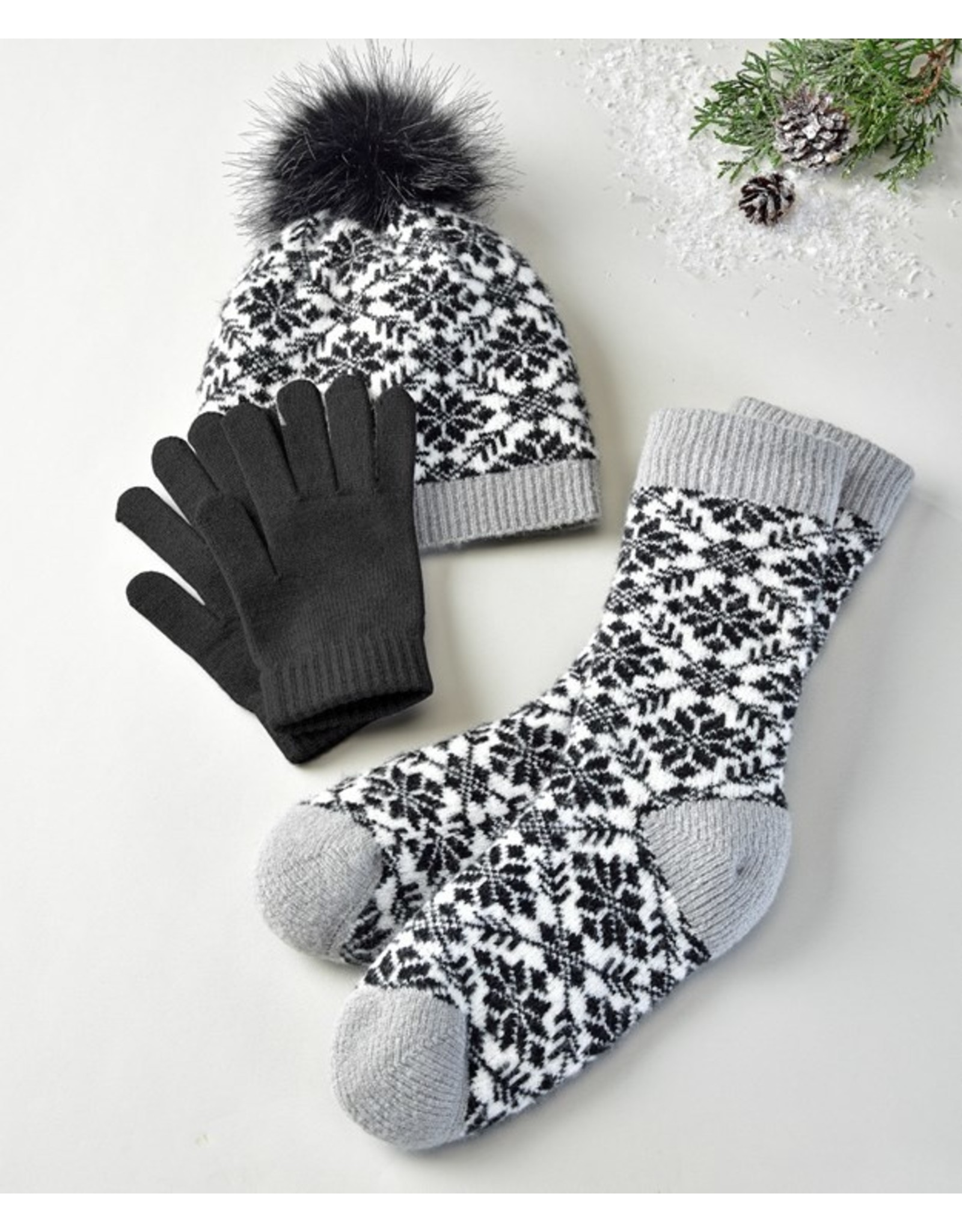 Winter Set in Black And White
