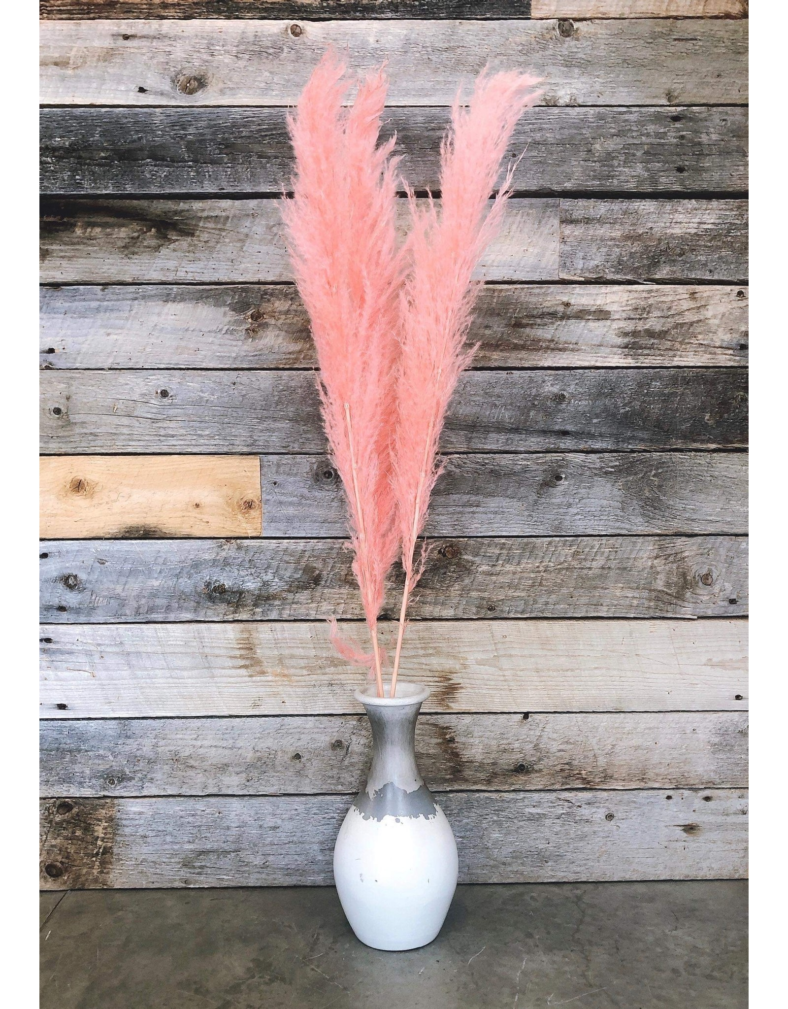 """Botanico Pampas Grass 45"""" Pink, 3 Par Paquet"""