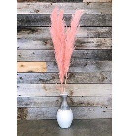 """Pampas Grass 45"""" Pink, 3 Par Paquet"""