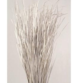 Botanico Wild Grass, White Wash 40p -4oz