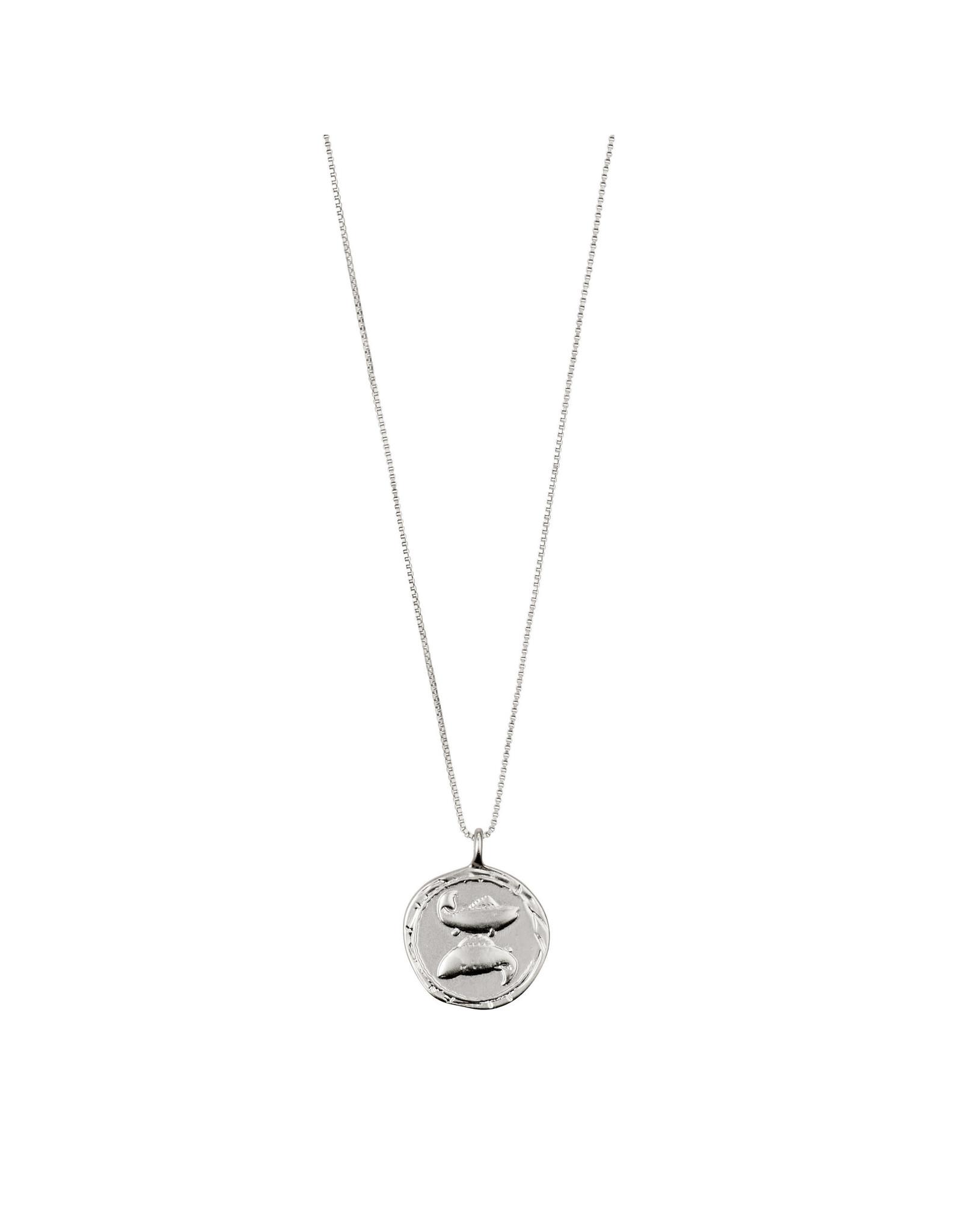 Pilgrim Necklace Pisces Zodiac Sign, Crystal, Silver