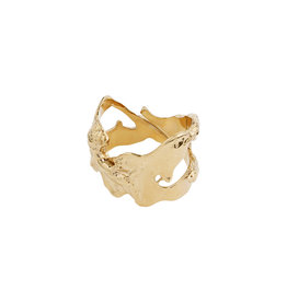 Pilgrim Ring Compass, Gold Plated