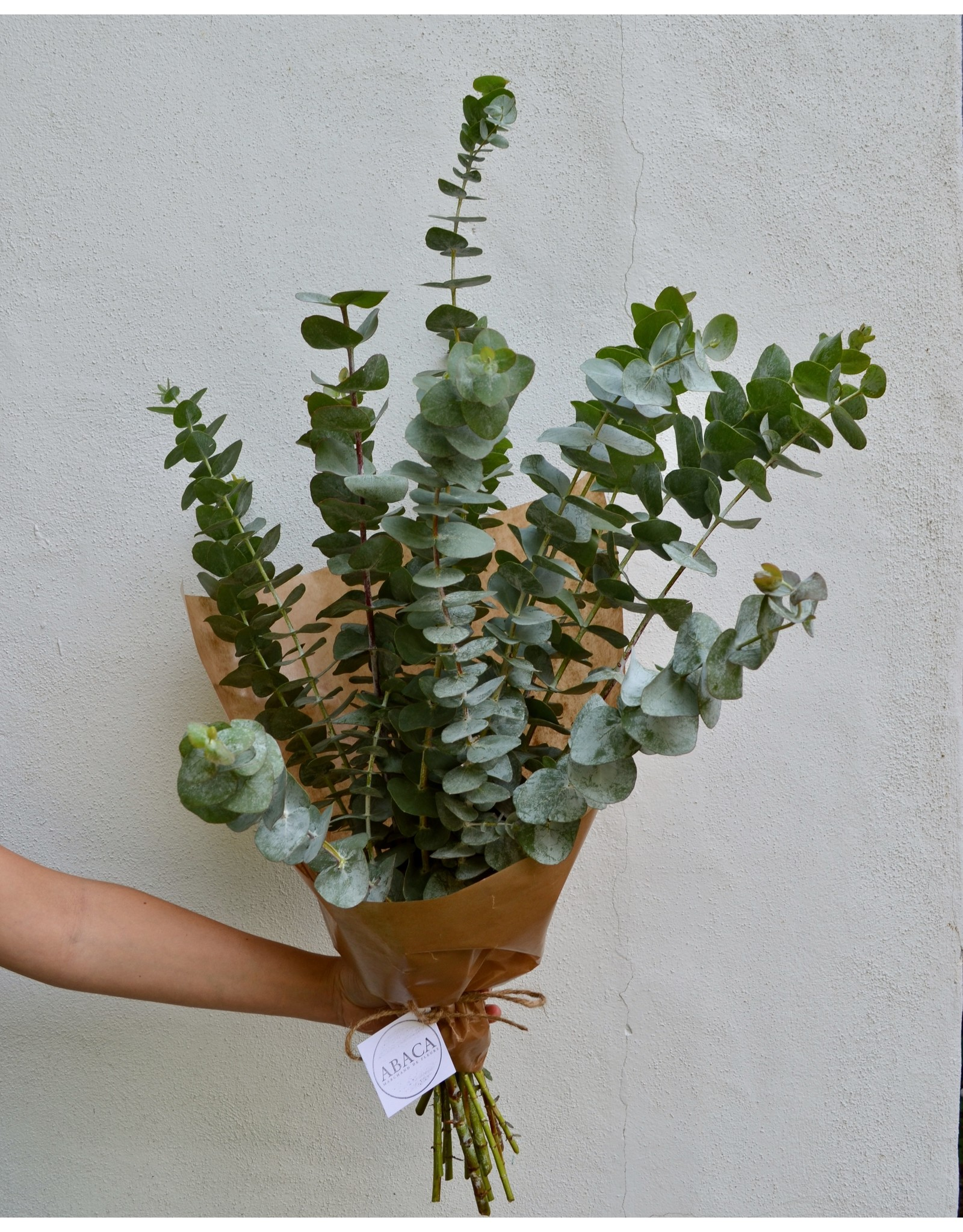 EcoFleurs Bouquet Eucalyptus, True Blue